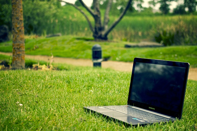 notebook, tráva, stromy