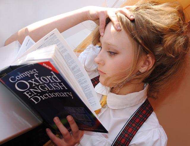 učení ze slovníku